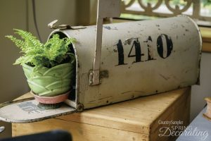 potted fern in mailbox