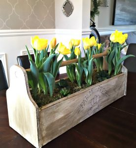 yellow tulips in wooden tool caddy