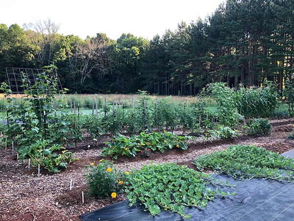 Preserving Your Garden Produce